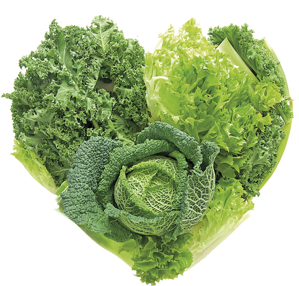 Heart shape green vegetables including cabbage and kale over a white background