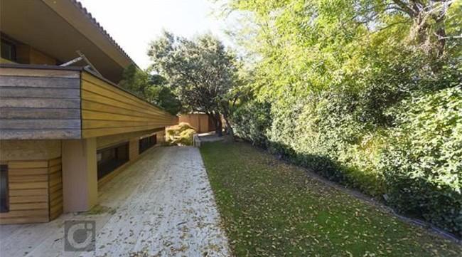 parte-lateral-del-jardin