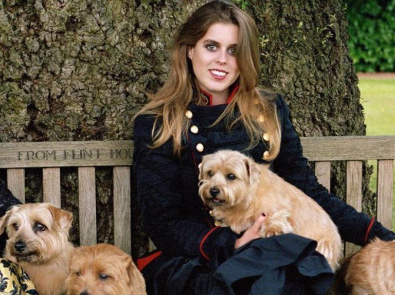 Saltan las alarmas en Buckingham tras morir envenenado el perro de Eugenia de York