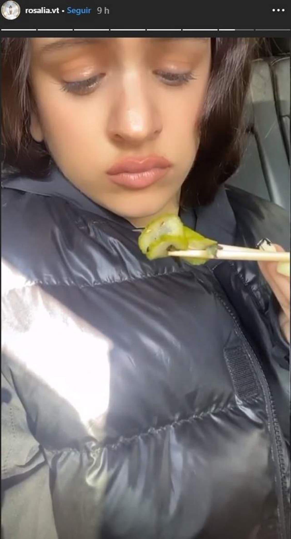 rosalia pepino int