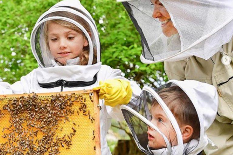 Victoria de Suecia con sus hijos, Estelle y Oscar, disfrutan de la apicultura