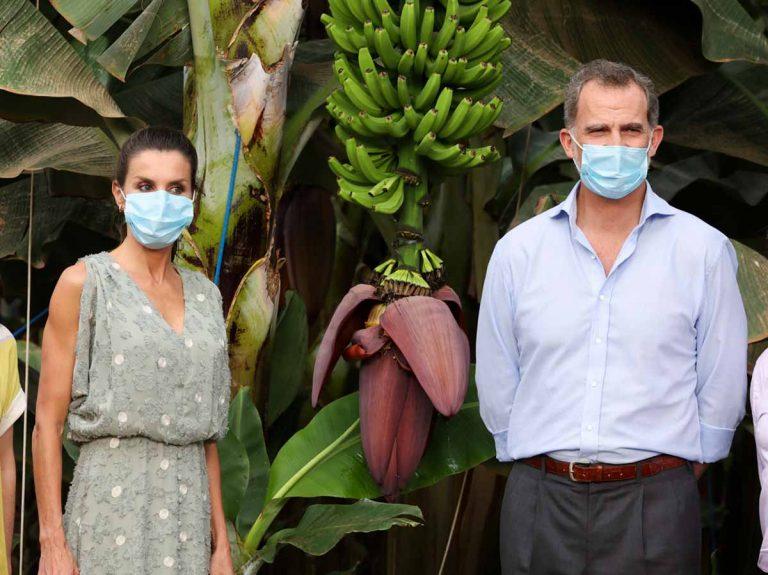 Los Reyes Felipe y Letizia visitan una zona platanera en Tenerife