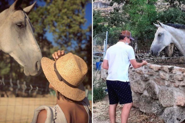 Las idílicas y rurales vacaciones familiares de Sara Carbonero e Iker Casillas