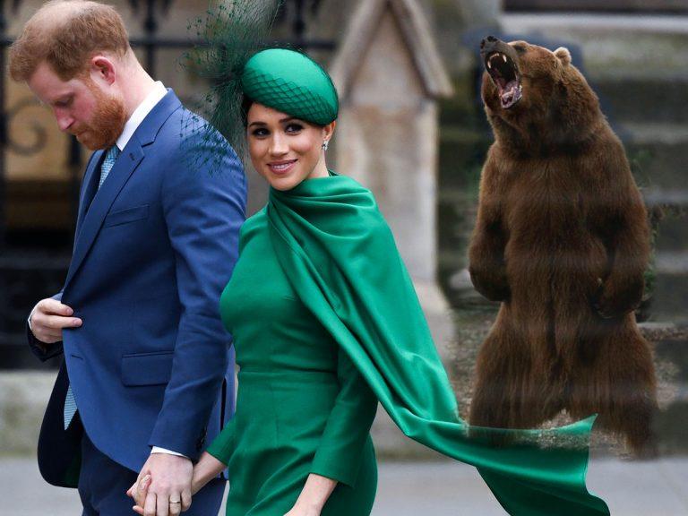 Un oso negro amenaza al príncipe Harry y Meghan Markle en su propia casa